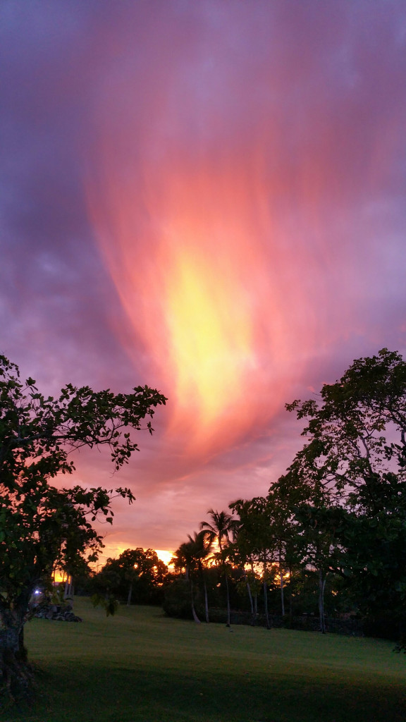 incendiary-sky